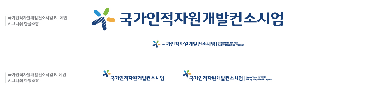 국가인적자원개발컨소시엄 BI 가로조합